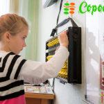 Возрастные особенности детей 6 лет